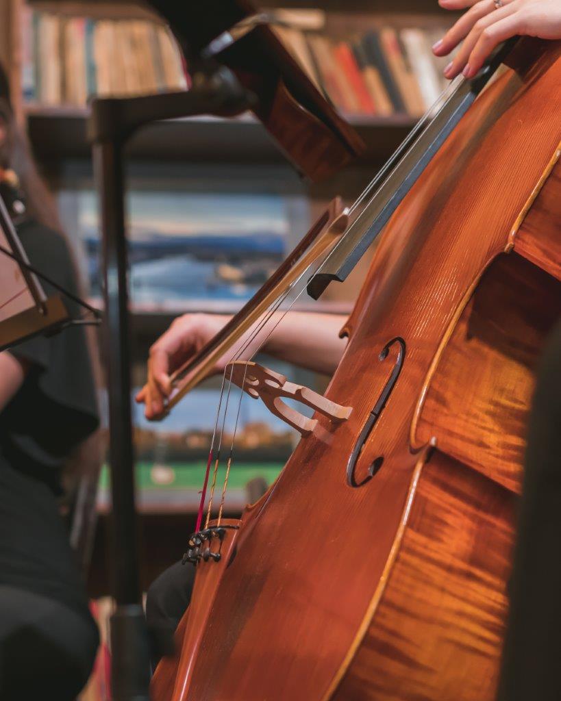 vertical-shot-musician-playing-violin-orchestra